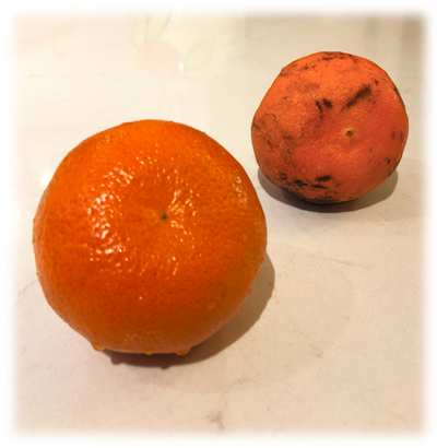 Mandarins_s